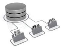 Barcode database